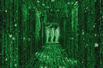 דע איך האינטרנט בנוי – ממתחיל למקצוען #1